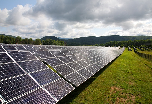 clarendon-solar-farm-1.jpg
