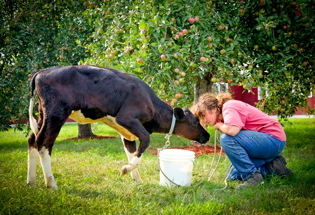 farm-loans-dream-on-farm-4.jpg